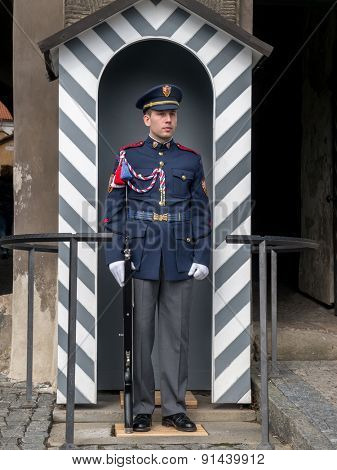 PRAGUE, CZECH REPUBLIC - MAY 02, 2015: The guard of honor at the presidential Palace in Prague castle