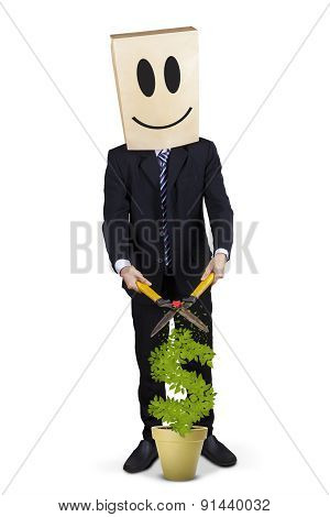 Businessperson And Money Tree