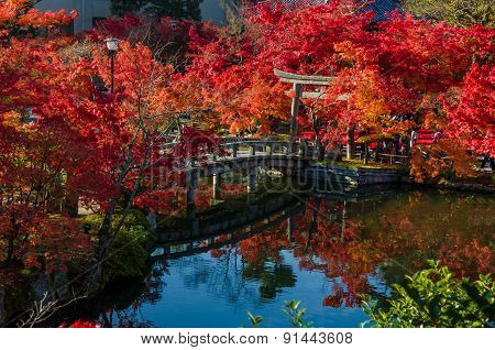 Autumn Foliage At The Stone Bridge In Eikando Temple, Kyoto, Japan