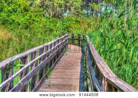 Wooden Path In Sardinia In Hdr