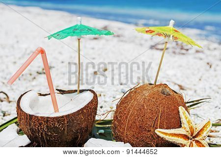 Coconuts, Sea Star And Palm Branches