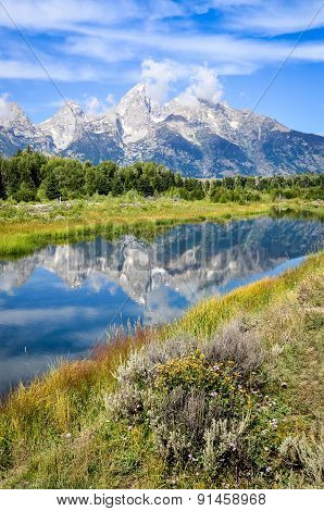 View Of Grand Teton Mountains  With Water Reflection And Flowers