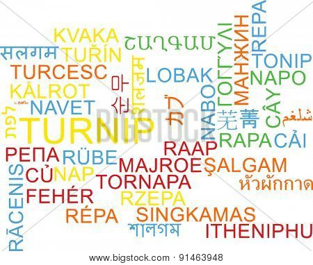 Background concept wordcloud multilanguage international many language illustration of turnip