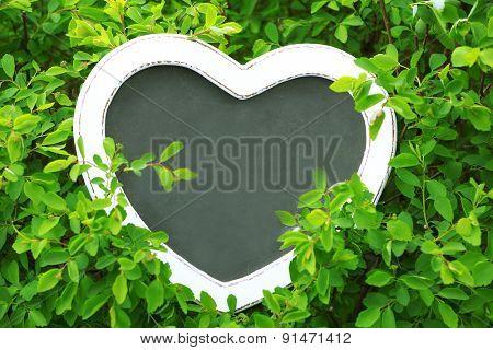 Photo frame over green bush background