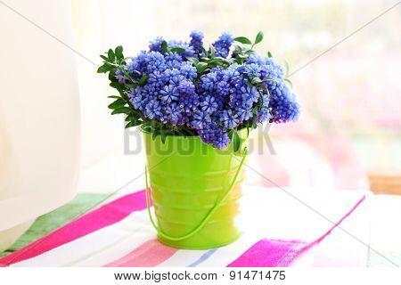 Beautiful bouquet of muscari - hyacinth in metal bucket on windowsill