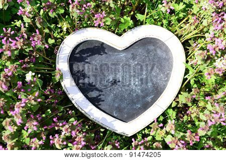 Photo frame over flowering bush background