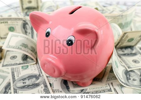 Piggy bank on pile of dollars, closeup