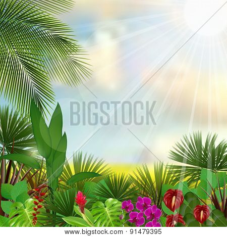 Beautiful tropical in the morning with a tree and flowers