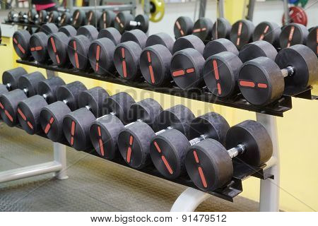 The image of the dumbbells