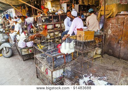 Indian Men Sell Their Chicken  And Cocks