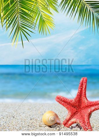Starfish And Shell Under A Palm Branch