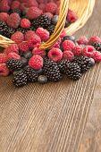 foto of blackberries  - different berries  - JPG
