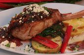 foto of pork chop  - pork chop grilled and resting on fresh rhubarb - JPG