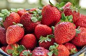foto of strawberry  - A bowl of strawberries - JPG