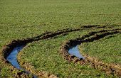picture of track field  - Car tracks in the waterlogged field in nature - JPG