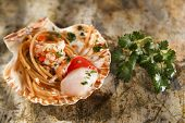 image of scallops  - First dish with spaghetti integral to scallops and parsley - JPG