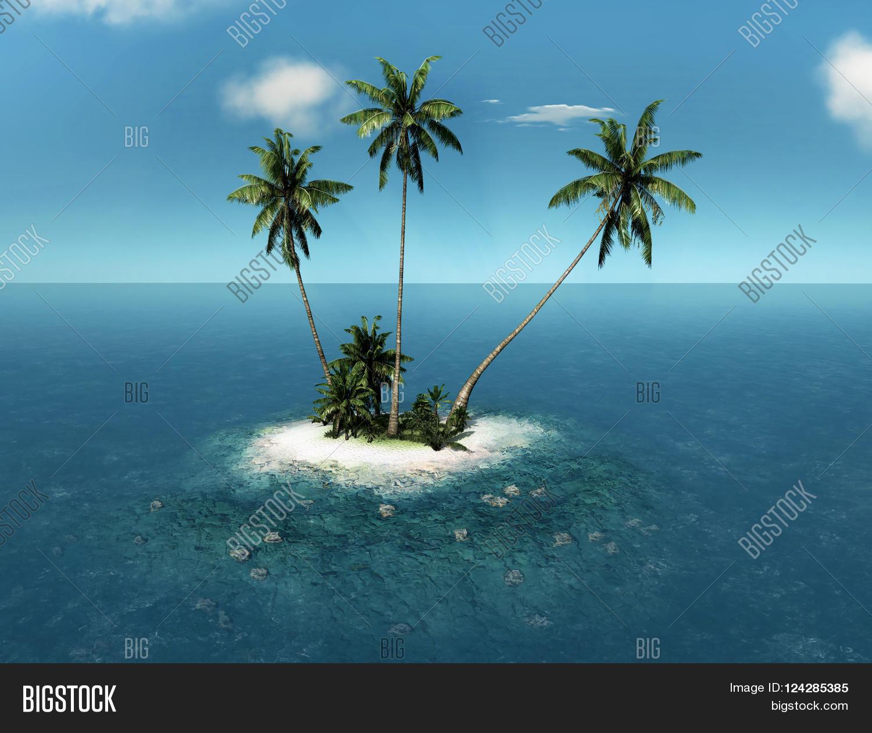 Palm Tree Island: Tropical Island Palm Trees Small Image & Photo