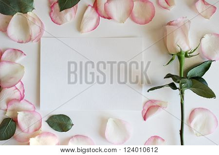 Pink Rose and Blank paper Mockup.Wedding, romantic template. Mockup layout template for brochure banner space for text.