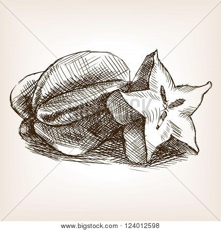 Carambola fruit sketch style vector illustration. Old engraving imitation. Carambola fruit hand drawn sketch imitation