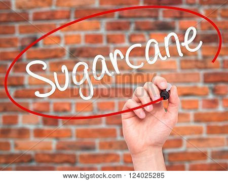 Man Hand Writing Sugarcane  With Black Marker On Visual Screen.