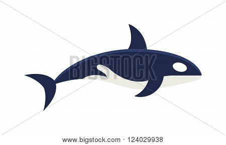Killer whale Orcinus orca vector isolated on white background. Killer Whale mammal animal. Killer Whale wildlife animal. Killer Whale vector illustration. Killer Whale marine wild.