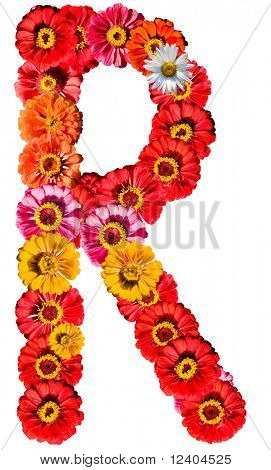 Alphabet collection made from different flowers- R