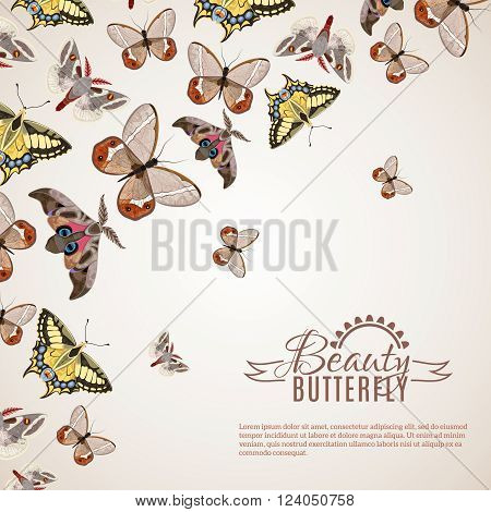 Beautiful butterfly decorative background with different moths and machaons vector illustration