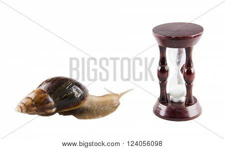 Snail and an hour-glass (as a time concept)