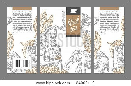 Tea picker woman tea leaves cup elephant. Vector engraved vintage isolated illustration for label black tea packaging box