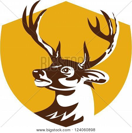 Illustration of a whitetail deer buck stag head looking to the side set inside shield crest done in retro style.