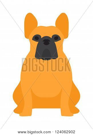 Shepherd dog pet and icon shepherd dog vector. Flat shepherd retriever dog domestic animal vector illustration.