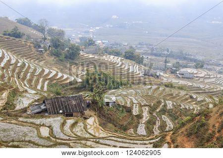 Sapa, Vietnam - February 16, 2016: Isolated house among the rice terraces of Sapa in north Vietnam