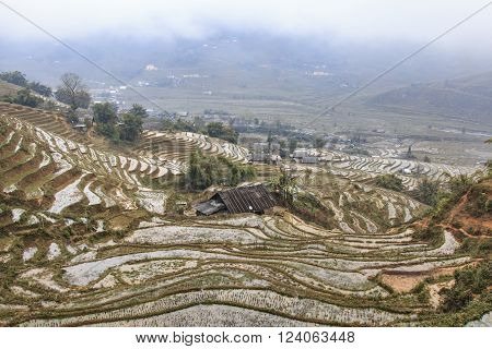 Sapa Vietnam - February 16 2016: Isolated house among the rice terraces of Sapa in north Vietnam
