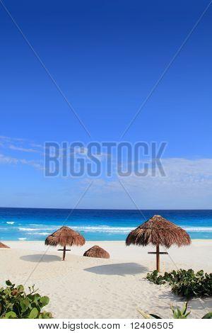 Palapa hut beach sun roof turquoise Caribbean