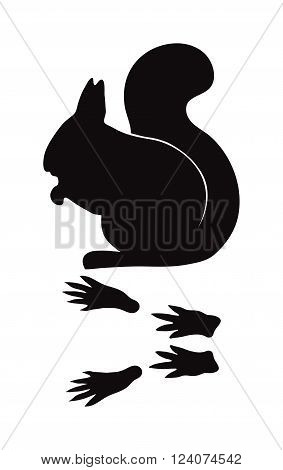 Wild squirrel animal black silhouette and wild animal predator symbol. Predator silhouette. Wild life black animal silhouette. Black silhouette wild animal zoo vector.