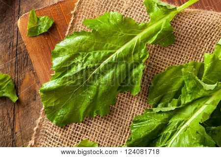 Raw Organic Turnip Greens