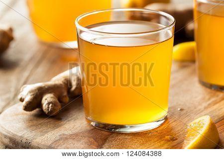 Homemade Fermented Raw Kombucha Tea