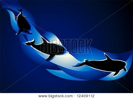 vector illustration of the dolphins trio in the deep blue sea