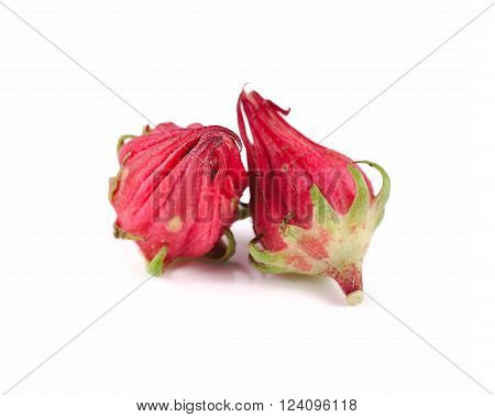 Flowers close up isolated on white background