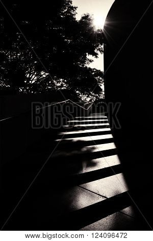 A staircase in high-contrast black and white with stark shadows