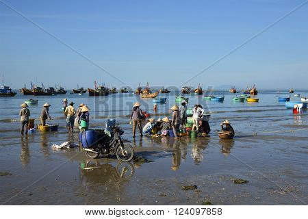 MUI NE, VIETNAM - DECEMBER 25, 2015: Local residents dismantle and sort night catch in the fishing harbor of the village of Mui Ne