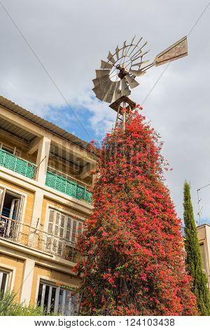 Wind vane street in old town Nicosia Cyprus