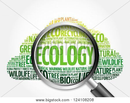 Ecology Word Cloud With Magnifying Glass