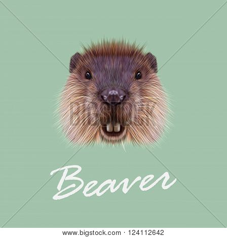 Cute face of aquatic fluffy rodent on green background.