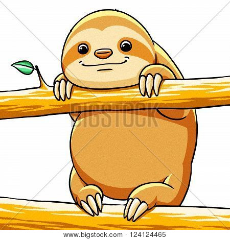funny cartoon cute cool fat sloth illustration