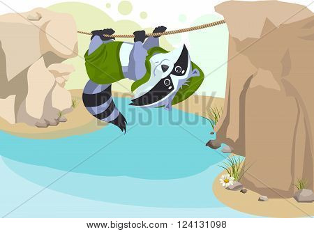 Scout raccoon Mountaineer rope. Scout crossing river on rope. Cartoon illustration in vector format