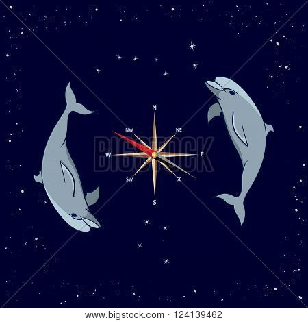 vector illustration of dolphins windrose Ursa Major and Southern Cross