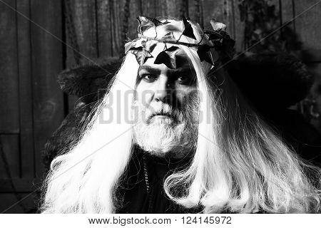 Zeus In White Wig