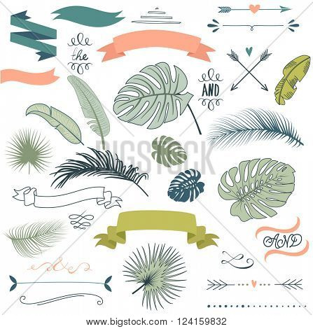 Wedding Tropical Palm leaves graphic set, arrows, hearts, laurel, wreaths, ribbons and labels.