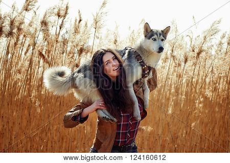 young caucasian female playing with her siberian husky puppy in the field during the sunset. Happy smiling girl having fun with puppy outdoors in beautiful light. Keeping a dog on his shoulders